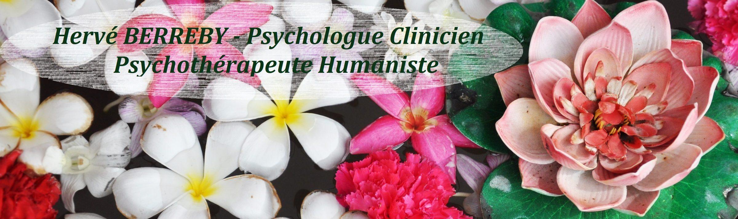 Hervé BERREBY – Psychologue clinicien à Aix-En-Provence – 0609031585